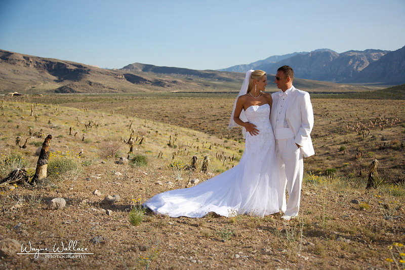 Las Vegas Wedding Jowita & Mirek