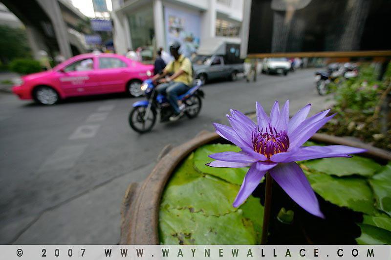 Bangkok-Thailand-21.jpg